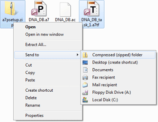 Archive with Access 2007 Password and Task files